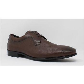 Zapatos Hombre Derbie Baerchi 4940 marrón