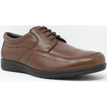 Zapatos Hombre Derbie Baerchi 3802 marrón