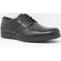 Zapatos Hombre Derbie Baerchi 3802 negro