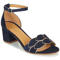 Zapatos Mujer Sandalias Emma Go ZOE Marino
