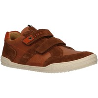 Zapatos Niños Multideporte Kickers 741160-30 JAMMI Marr?n