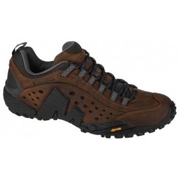 Zapatos Multideporte Merrell Intercept marrón