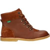 Zapatos Niños Botas de caña baja Kickers 736370-30 KICK HOOD Marr?n