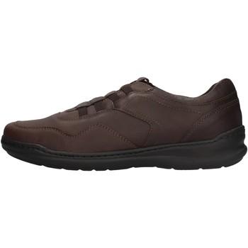 Zapatos Hombre Zapatillas bajas Braking - Slip on  testa di moro 6459 MARRONE
