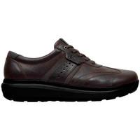 Zapatos Hombre Zapatillas bajas Joya DAVID M DARK_BROWN