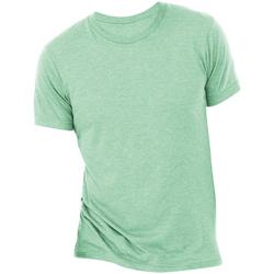 textil Hombre Camisetas manga corta Bella + Canvas CA3413 Menta triblend