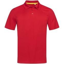 textil Hombre Polos manga corta Stedman  Rojo pasión