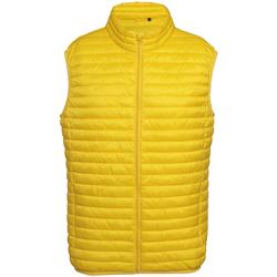 textil Hombre Plumas 2786 Fineline Amarillo Brillante