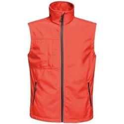 textil Hombre Chaquetas de punto Regatta TRA848 Rojo Clásico/Negro
