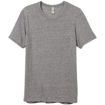 textil Hombre Camisetas manga corta Alternative Apparel AT001 Gris Eco