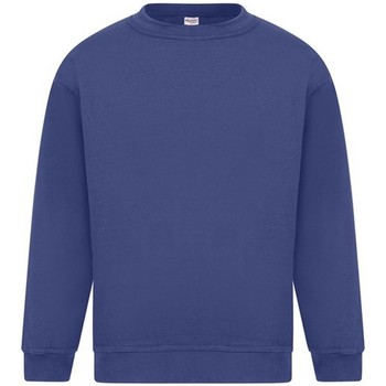 textil Hombre Sudaderas Absolute Apparel Sterling Real