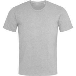 textil Hombre Camisetas manga corta Stedman  Gris moteado
