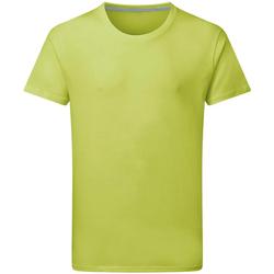 textil Hombre Camisetas manga corta Sg Perfect Lima