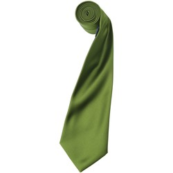 textil Hombre Corbatas y accesorios Premier Satin Verde oasis