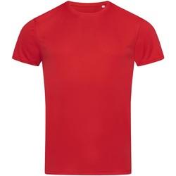 textil Hombre Camisetas manga corta Stedman  Rojo pasión