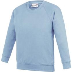 textil Niños Sudaderas Awdis  Azul cielo