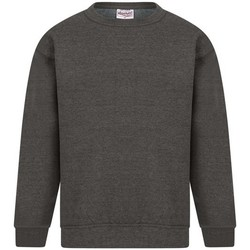 textil Hombre Sudaderas Absolute Apparel Sterling Carbón
