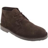 Zapatos Hombre Botas de caña baja Roamers  Marrón oscuro