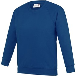 textil Niños Sudaderas Awdis AC01J Azul Royal
