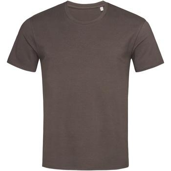 textil Hombre Camisetas manga corta Stedman  Chocolate oscuro