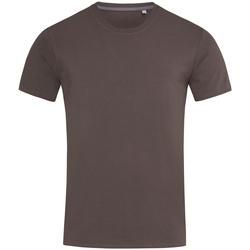 textil Hombre Camisetas manga corta Stedman Stars  Chocolate oscuro