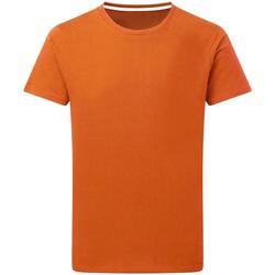 textil Hombre Camisetas manga corta Sg Perfect Naranja