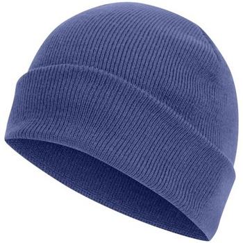 Accesorios textil Gorro Absolute Apparel  Azul Real