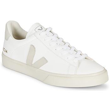Zapatos Zapatillas bajas Veja CAMPO Blanco / Gris