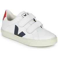 Zapatos Niños Zapatillas bajas Veja SMALL-ESPLAR-VELCRO Blanco / Azul / Rojo