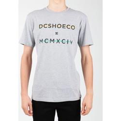 textil Hombre Camisetas manga corta DC Shoes DC SEDYZT03760-KNFH gris