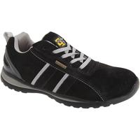 Zapatos Hombre Zapatillas bajas Grafters  Negro/ Gris