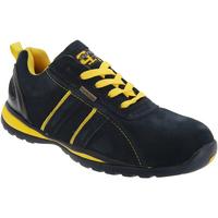 Zapatos Hombre Zapatillas bajas Grafters  Multicolor
