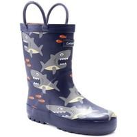 Zapatos Niño Botas de agua Cotswold  Tiburones