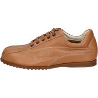 Zapatos Hombre Zapatillas bajas Hogan sneakers cuero marrón