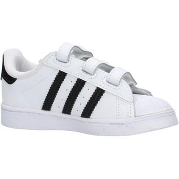 Zapatos Niño Zapatillas bajas adidas Originals - Superstar bco/nero EF4842 BIANCO