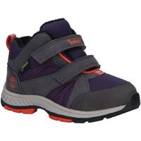 Zapatos Niños Multideporte Timberland A226R NEPTUNE Gris