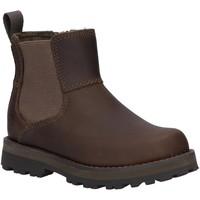 Zapatos Niños Botas de caña baja Timberland A28PN COURMA Gris