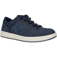 Zapatos Niño Derbie & Richelieu Timberland A215P DAVIS Beige