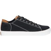 Zapatos Hombre Zapatillas bajas Timberland A1ZRT ADVENTURE Negro