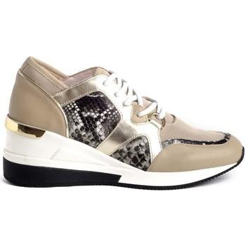Zapatos Mujer Zapatillas bajas Stephen Allen 2077-C1 Beige