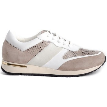 Zapatos Mujer Zapatillas bajas Stephen Allen 10833-C11 Beige