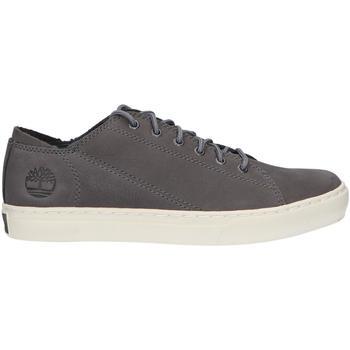 Zapatos Hombre Zapatillas bajas Timberland A1ZJY ADVENTURE Gris