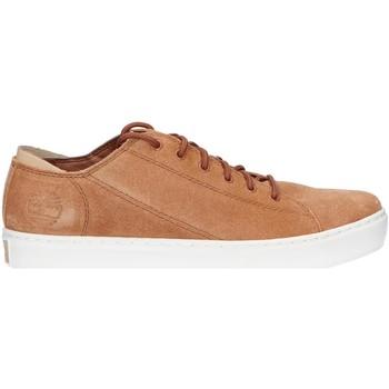Zapatos Hombre Zapatillas bajas Timberland A2DHP ADVENTURE Marr?n