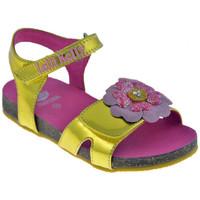 Zapatos Niña Sandalias Lelli Kelly  Oro