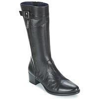 Zapatos Mujer Botas de caña baja Dorking LOLETA Negro