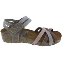 Zapatos Mujer Sandalias Interbios Sandalias  5338 Ours-Gris-Pardo-Salmón Gris