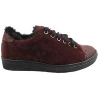 Zapatos Zapatillas bajas Sotoalto SOHOAG001BU Burdeo