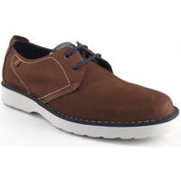 Zapatos Hombre Derbie Baerchi 3670 marrón