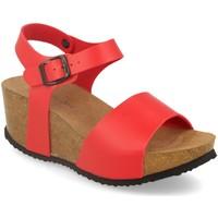 Zapatos Mujer Sandalias Silvian Heach M-77 Rojo