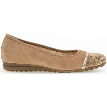 Zapatos Mujer Bailarinas-manoletinas Gabor 42.622/35T35-2.5 Marrón